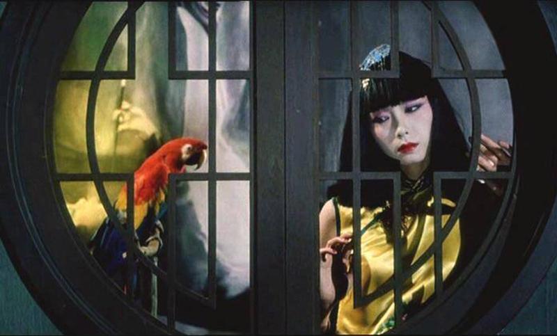 《上海異人娼館》