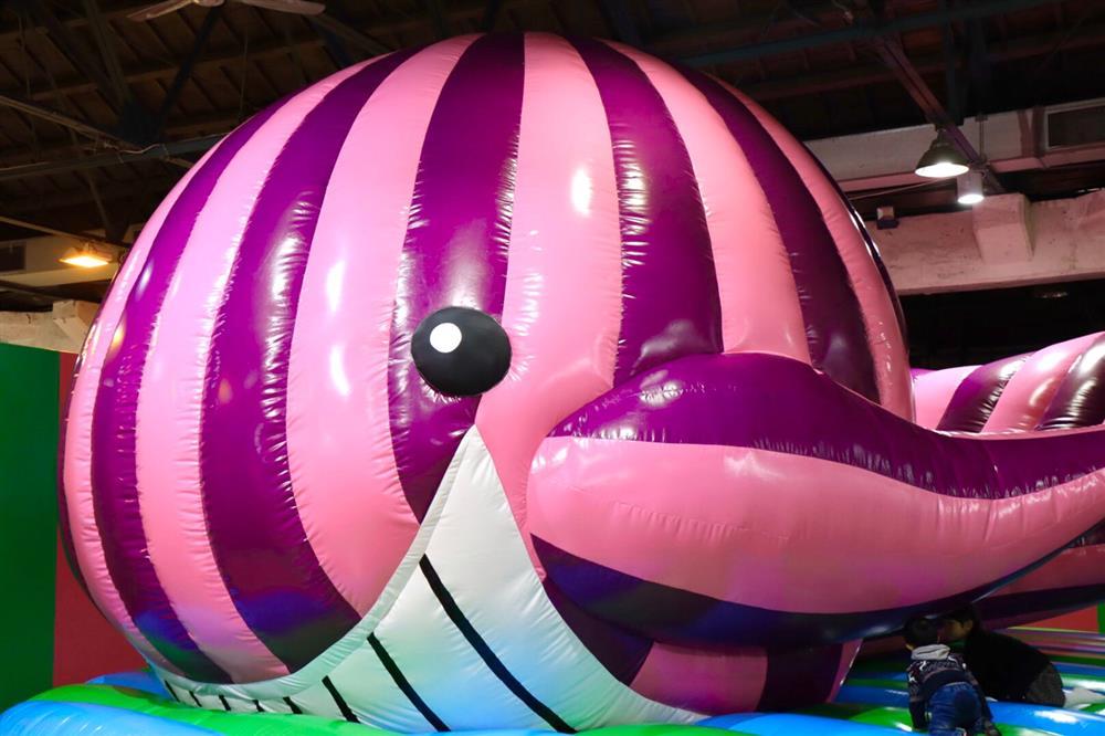 《霍夫曼的療癒動物園》粉紅鯨