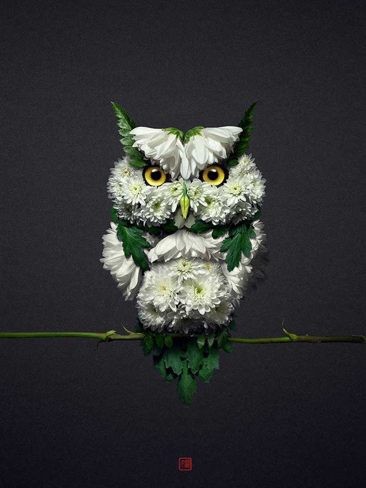 用花草作畫!日本藝術家井上羅來用自然花草拼貼生態之美
