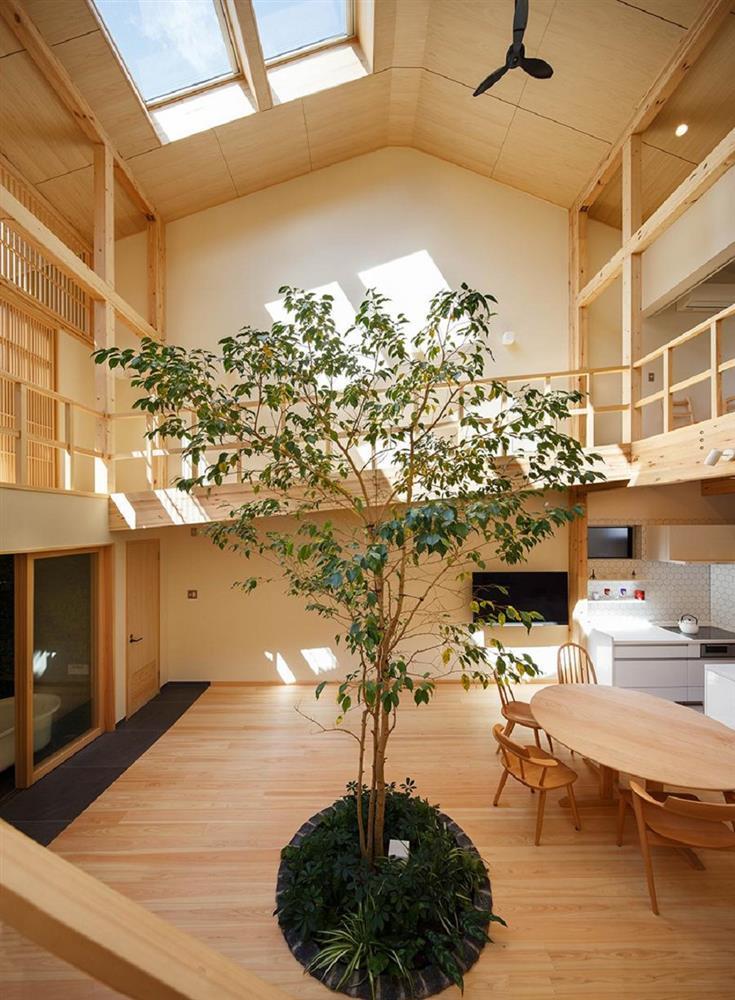 將庭院綠樹搬進家中!京都木質設計住宅 融合日式傳統與現代建築美學_04