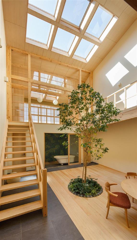 將庭院綠樹搬進家中!京都木質設計住宅 融合日式傳統與現代建築美學_03
