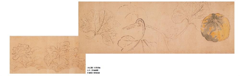 細膩鳥語花香工筆畫!日本最大畫派「狩野派」鮮為人知的動植物寫生_05