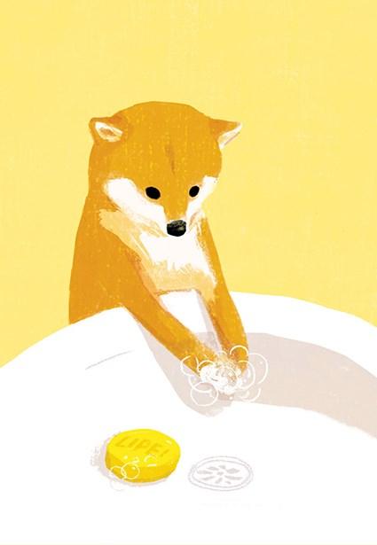 黃立佩以可愛小狗為洗手防疫宣傳主角