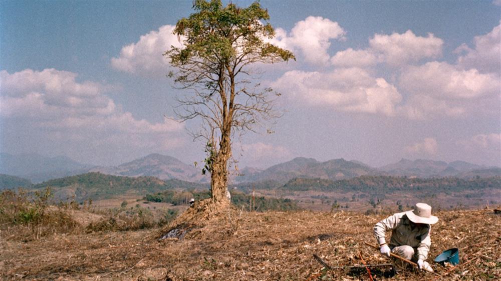 寮國日常未爆彈