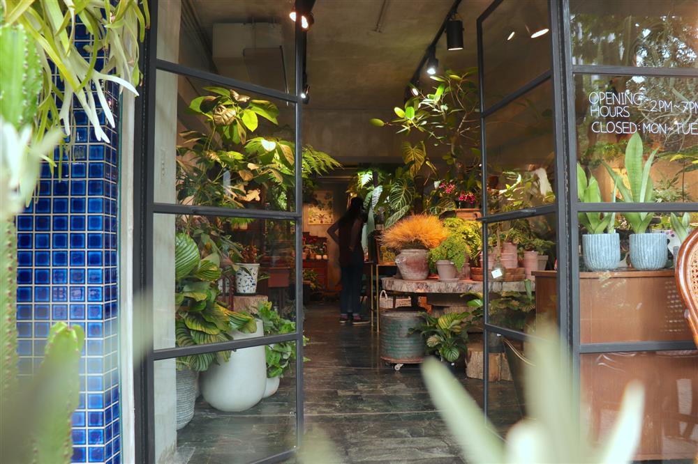 從花市走進城市,創辦人小雪與Even將鍾愛的老件古物,以及世界各地的選品與植物結合