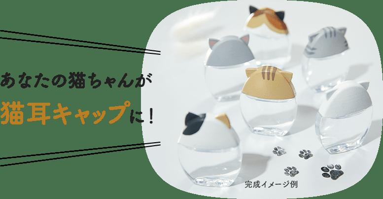 日本樂敦推貓耳眼藥水2