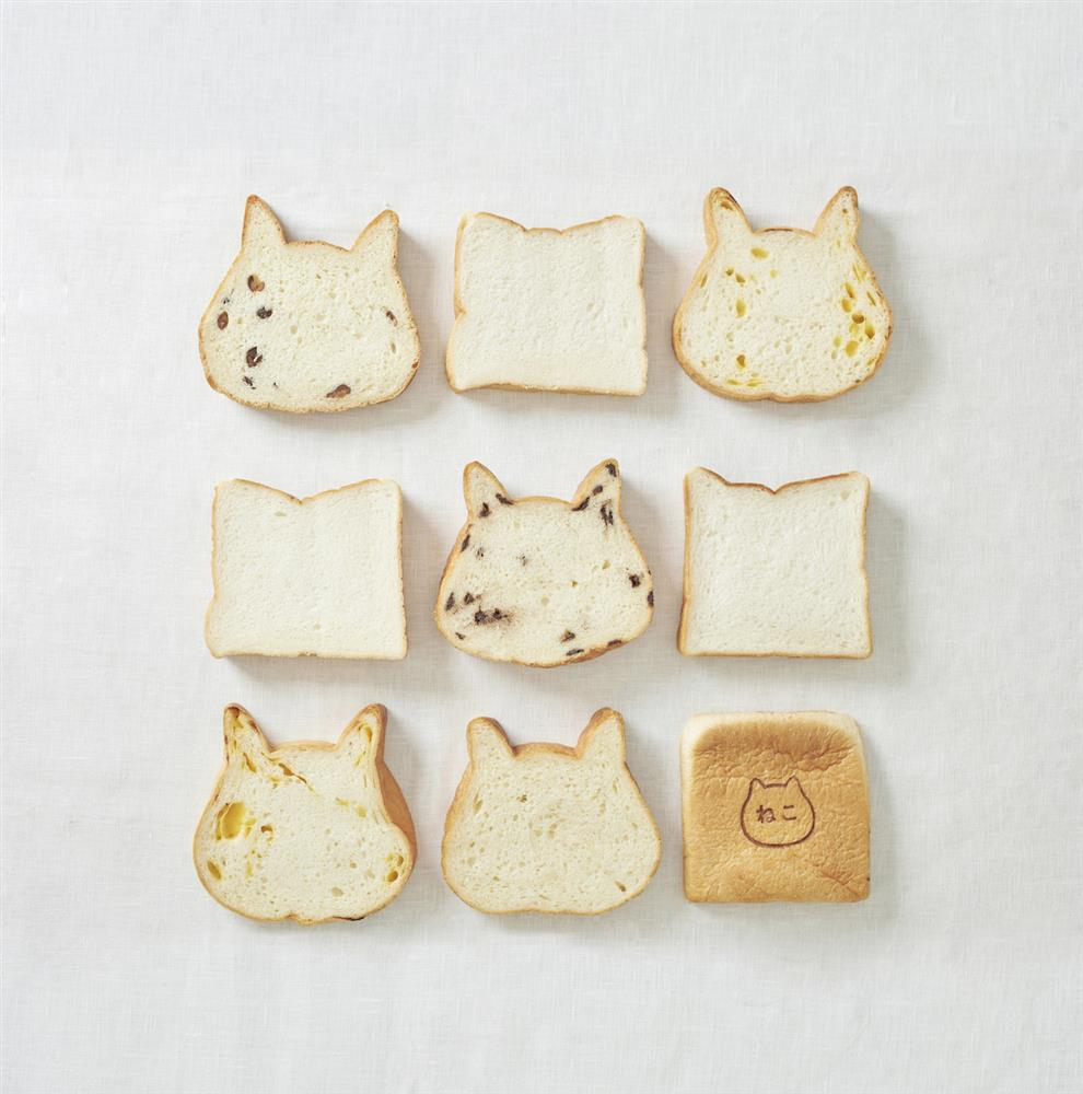 日本貓咪吐司9月快閃台北