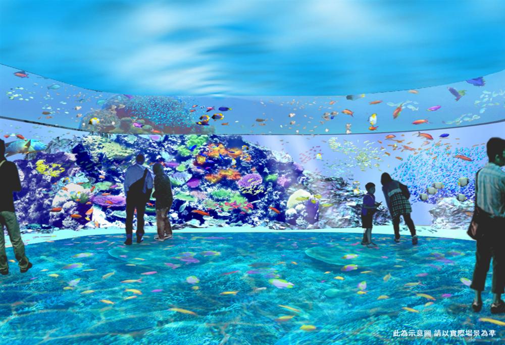 桃園「Xpark」水族館4大展區亮點