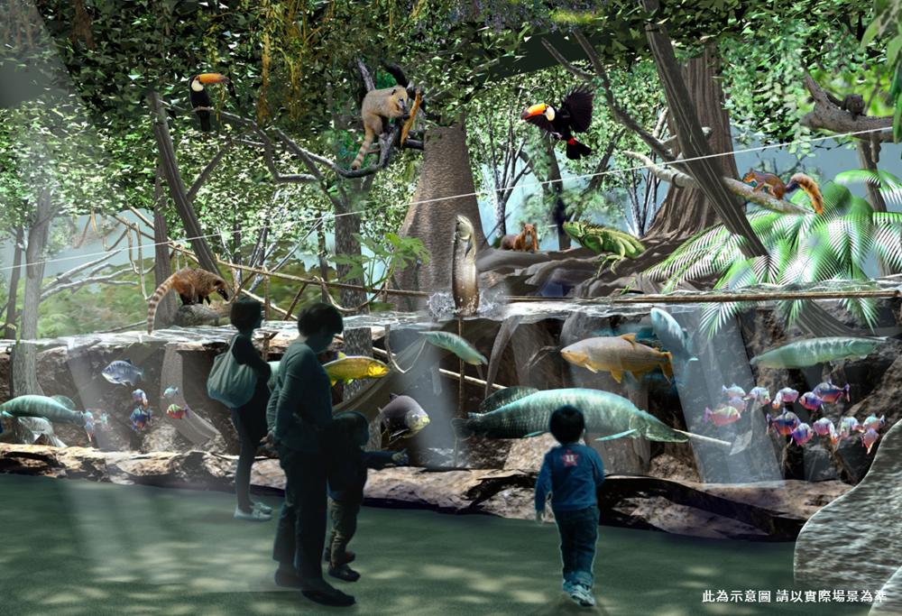 桃園「Xpark」水族館4大展區亮點4