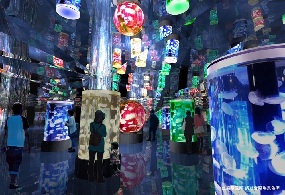 桃園「Xpark」水族館4大展區亮點5