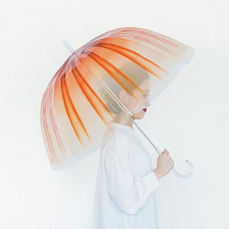 水母雨傘4