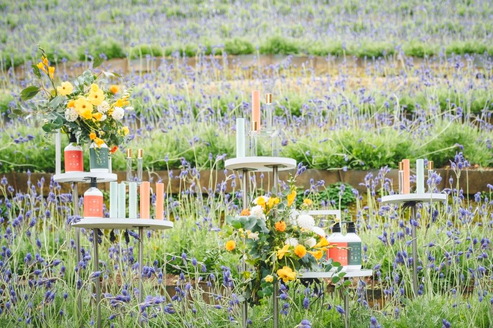 薰衣草森林圖10.輕舞花園傳遞著一種甜蜜又幸福的浪漫氣息