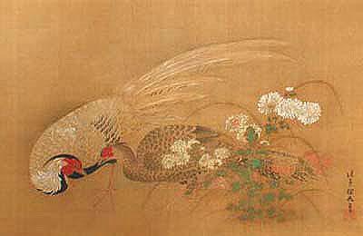 細膩鳥語花香工筆畫!日本最大畫派「狩野派」鮮為人知的動植物寫生_08