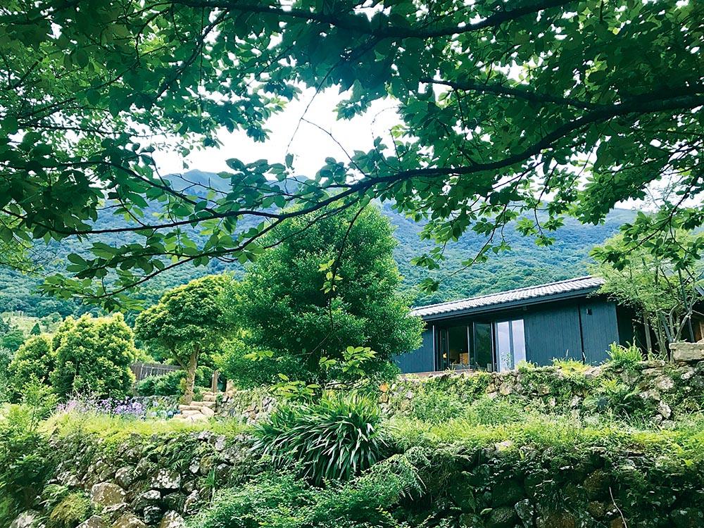 陽明山小屋2