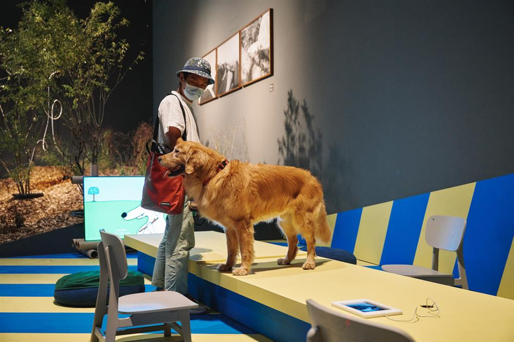 首爾國立現代美術館《狗狗的博物館》讓寵物踏入藝文空間3