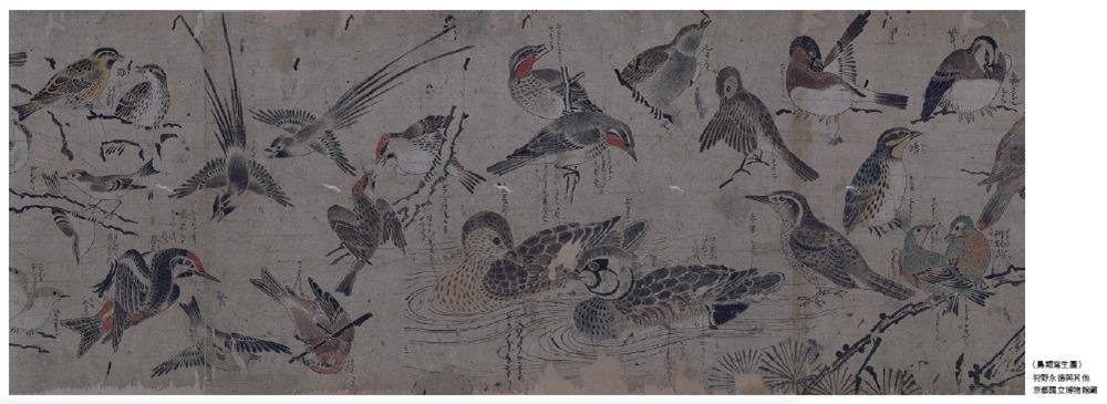 細膩鳥語花香工筆畫!日本最大畫派「狩野派」鮮為人知的動植物寫生_04