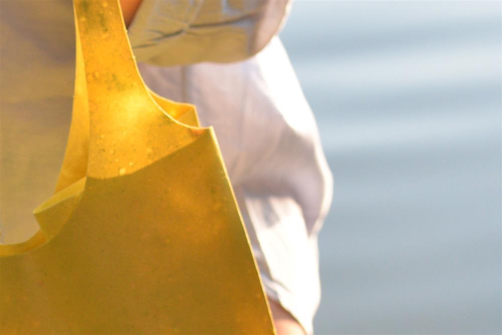 水果皮製成的環保手提袋Sonnet155_08