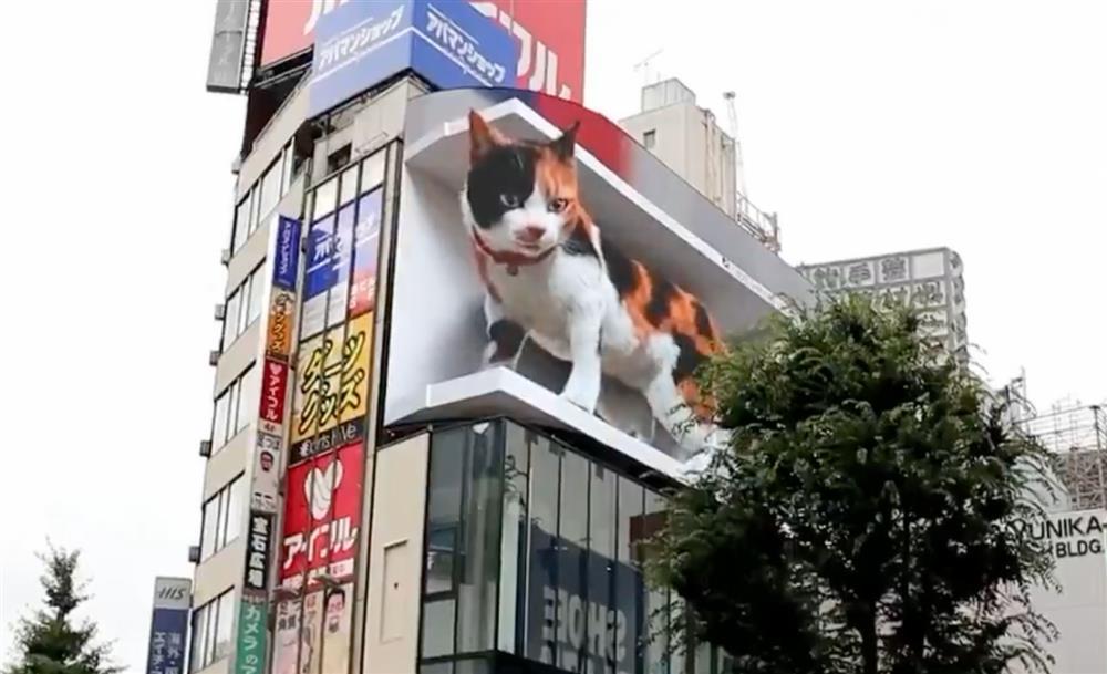 巨大「新宿東口の猫」現身新宿街頭
