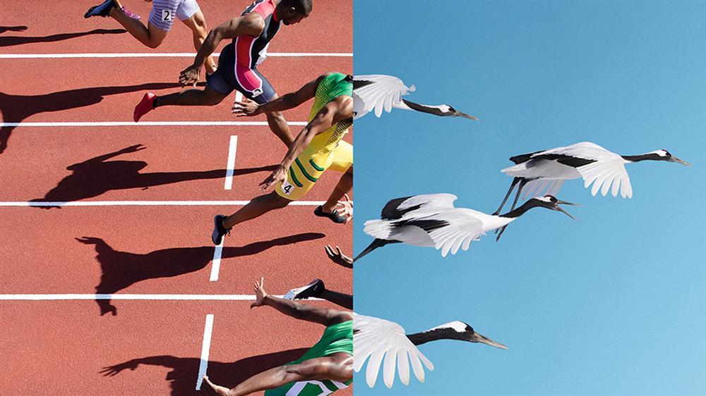 2020東京奧運OMEGA廣告3_33