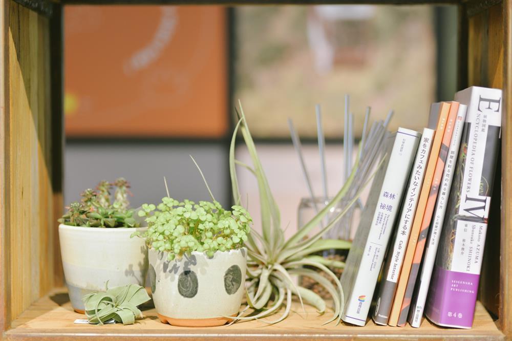 6.微型植物圖書館-Boven