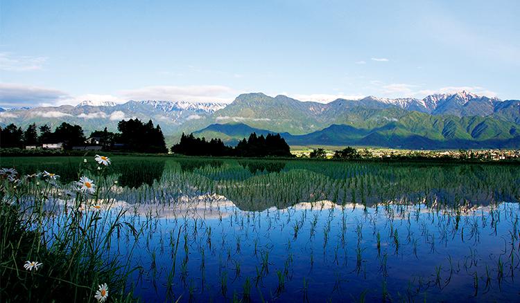 好設計,讓地方重燃元氣!「日本最美的村莊」聯盟守護農山村的景觀與生活_03