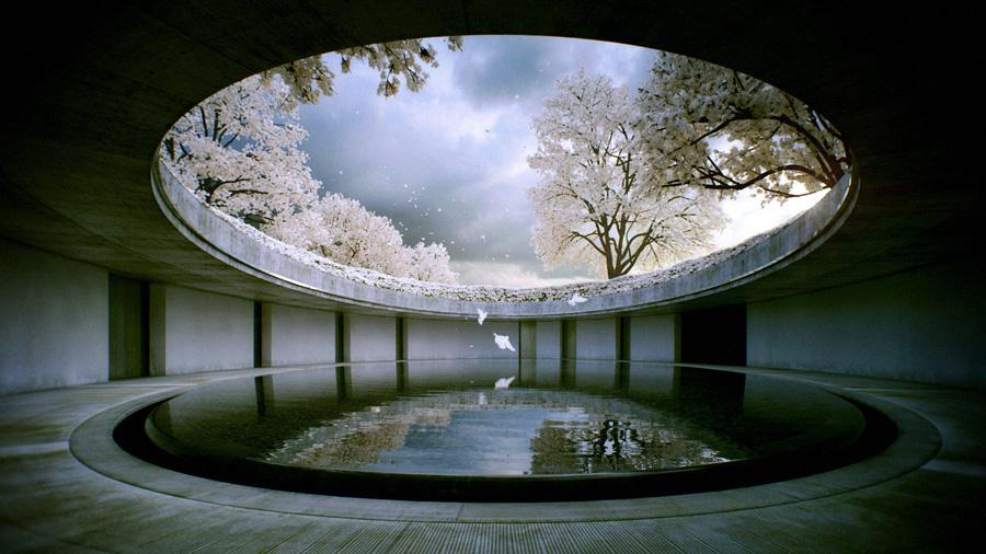 關於安藤忠雄的10個趣味事!直擊世紀建築大師的小祕密_05