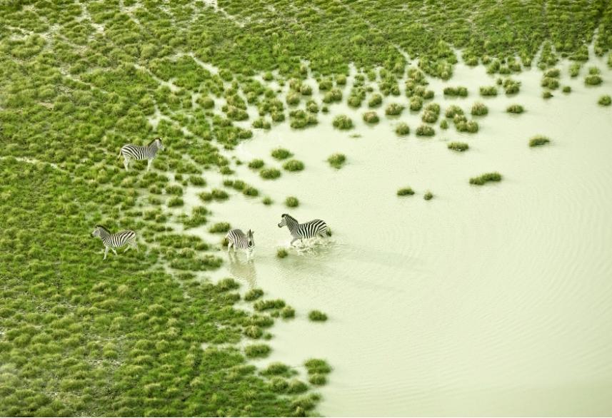透明感自然攝影!美國攝影師Zack Seckler空拍捕捉南非澄澈自然美景_01