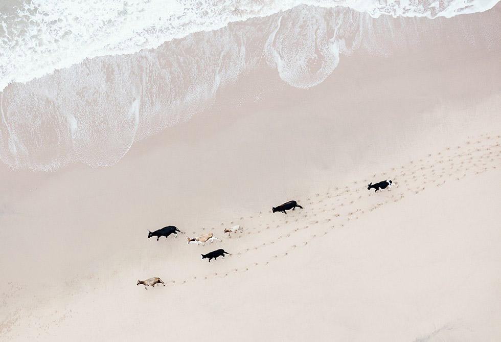 時光宛如凝結的瞬間!澄澈透明感攝影紀錄非洲南方之美!
