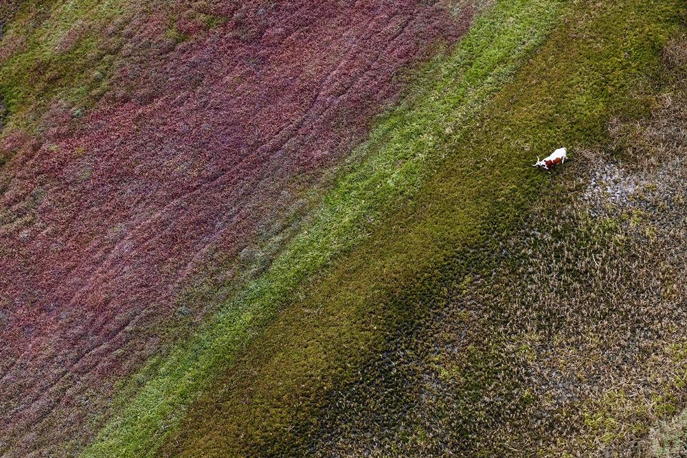 透明感自然攝影!美國攝影師Zack Seckler空拍捕捉南非澄澈自然美景_09