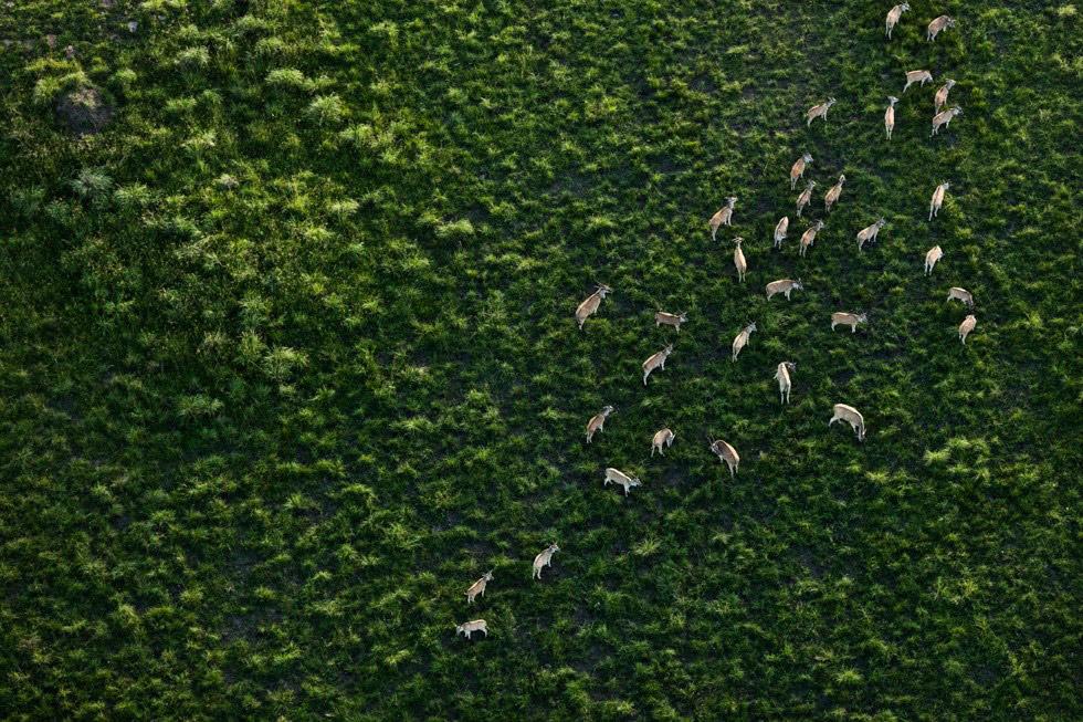 透明感自然攝影!美國攝影師Zack Seckler空拍捕捉南非澄澈自然美景_10