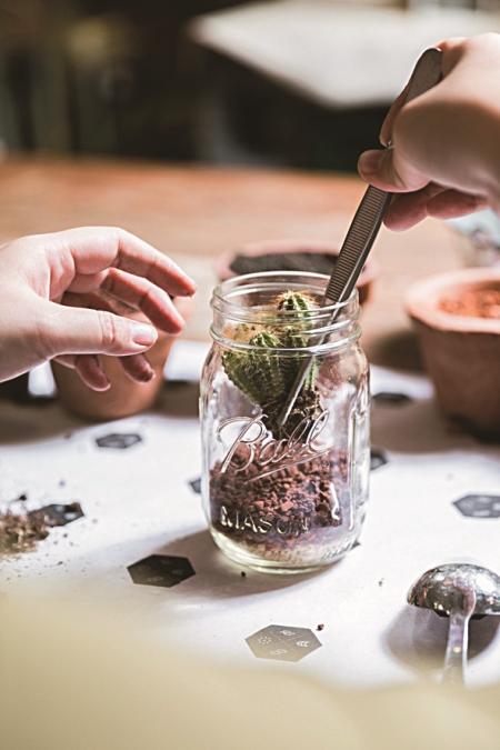梅森罐裡的綠洲 妝點繽紛夏日的多肉植物大集合