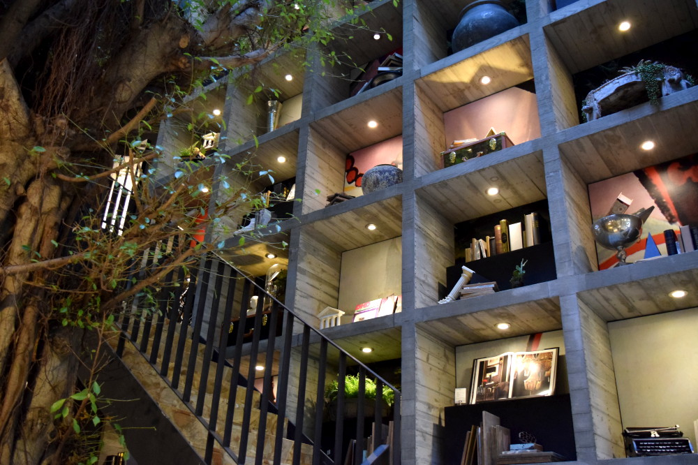 在百年榕樹下看書!台中「樂樂書屋」創造森林系藝術閱讀空間