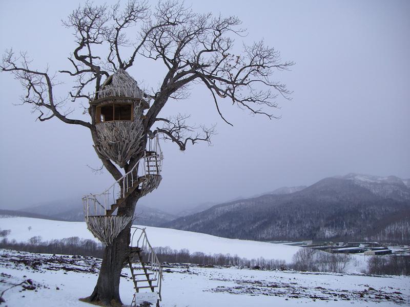 與大地為伍的建築職人!日本樹屋達人小林崇的樹屋玩樂提案_04