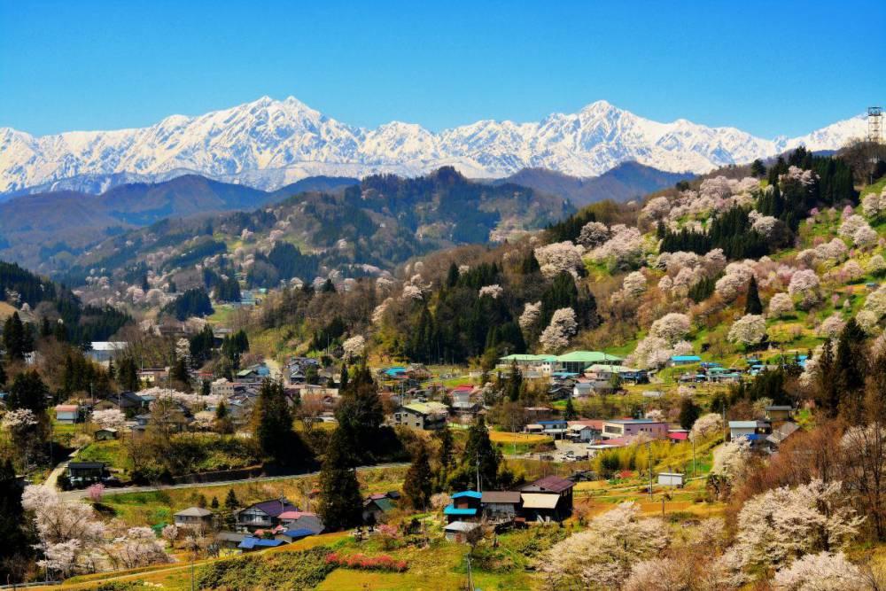 好設計,讓地方重燃元氣!「日本最美的村莊」聯盟守護農山村的景觀與生活_05