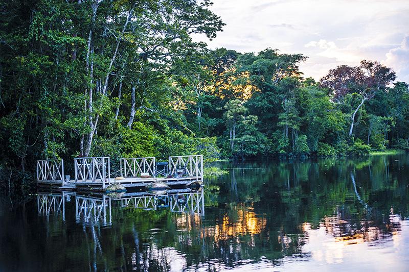 秘魯設計師操刀Aria Amazon郵輪!加入水上探險隊深入亞馬遜河