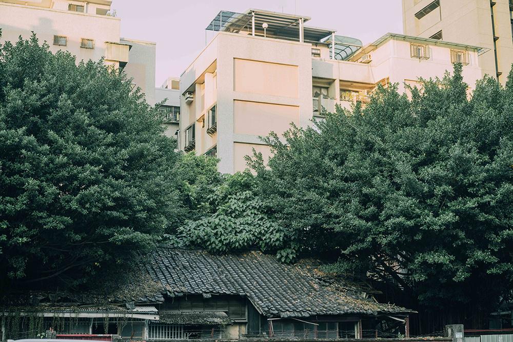 《用鏡頭看見潮州街 - 攝影師叮咚的潮州綠地圖》作品