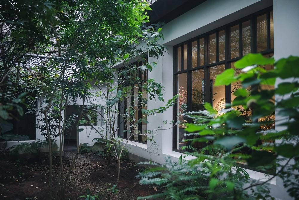 烏龍茶道正青春!台北「清香齋二號院」在雜木林老屋庭園品茗台灣茶