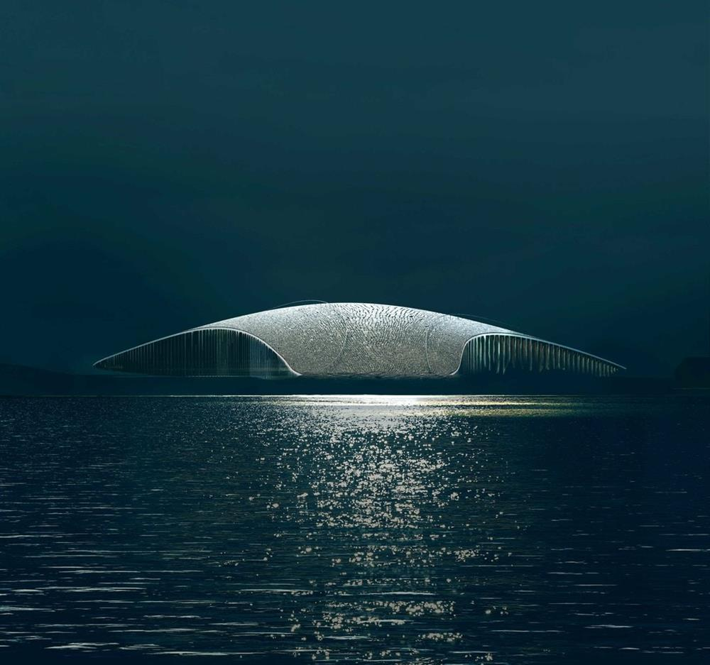 挪威最佳賞鯨新地標「The Whale」!_01