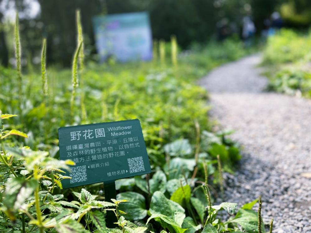 植物園「野花園」尋寶10
