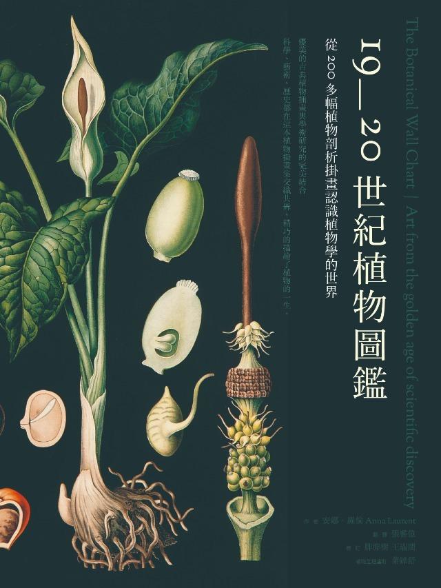 《19~20世紀植物圖鑑》