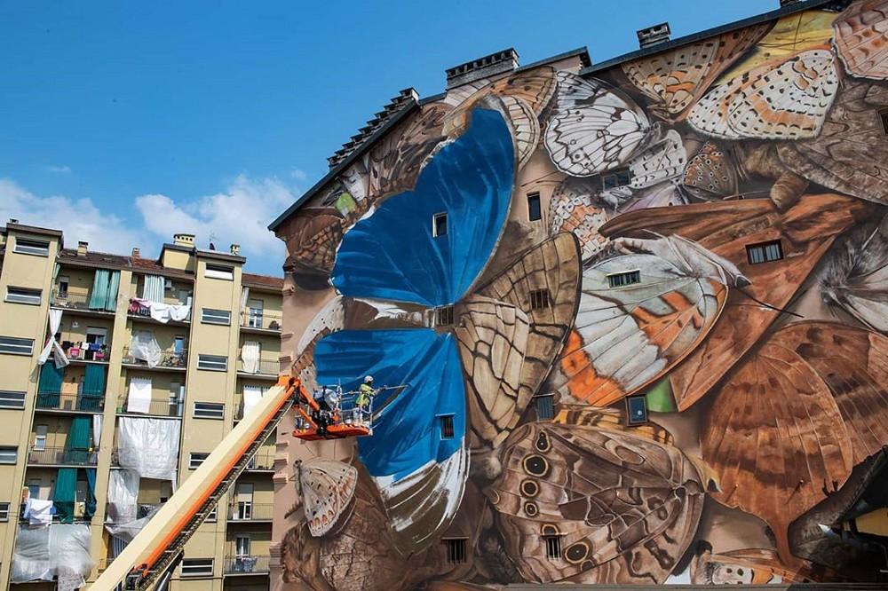 法國街頭藝術家Mantra將建築物外牆繪成「巨型蝴蝶標本」