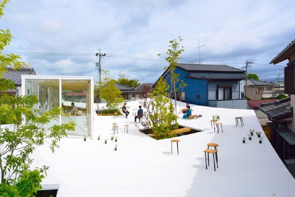 當屋頂化身純白系小公園!日本Sannouno辦公室富有張力的捲曲屋頂、自然樹木穿透空間