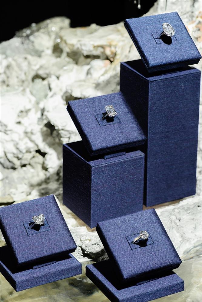 台北101「DE BEERS NATURE'S WONDERS頂級珠寶展」!絕美工藝結合當代藝術 打造一場無與倫比的藝術展覽