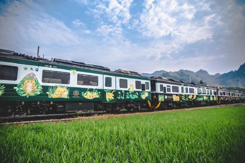 台鐵「集集石虎號」全新彩繪列車亮相!台灣山羌、赤腹松鼠、莫氏樹蛙等里山動物家族躍上車廂