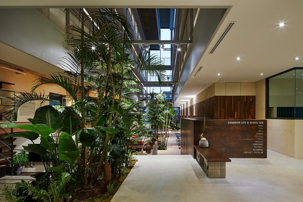 租屋族也能享受的高質感生活!韓國共享公寓「樹屋Tree house」綠意中庭花園、大片落地窗環繞_11