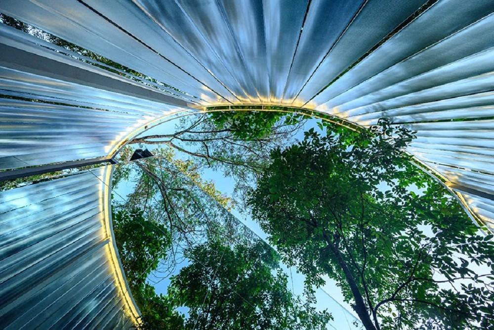 藏身清邁樹林中的咖啡廳Boonma Café!sher maker翻新空間設計、在滿室植物環繞下啜飲咖啡_12