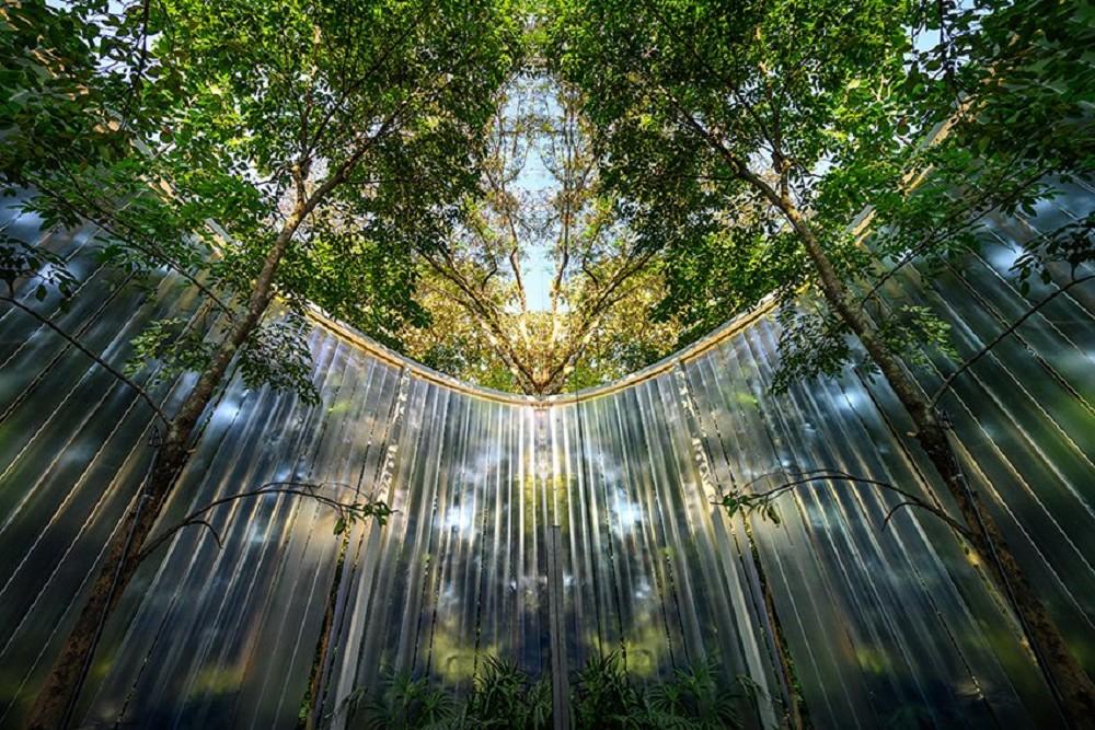 藏身樹林的絕美咖啡廳!清邁「Boonma Café」翻新空間 在滿室綠意植物環繞啜飲咖啡_02