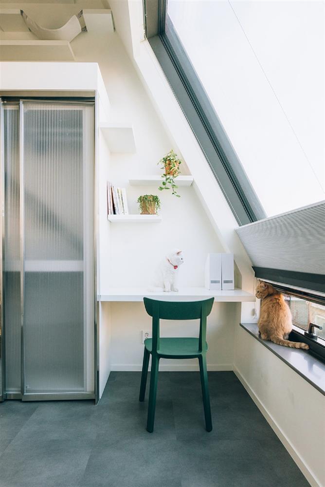 租屋族也能享受的高質感生活!韓國共享公寓「樹屋Tree house」綠意中庭花園、大片落地窗環繞_04