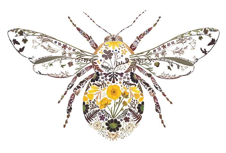 絕美碎葉押花拼畫!英國藝術家Helen Ahpornsiri將樹葉花草、蕨類製成精緻動物圖_07
