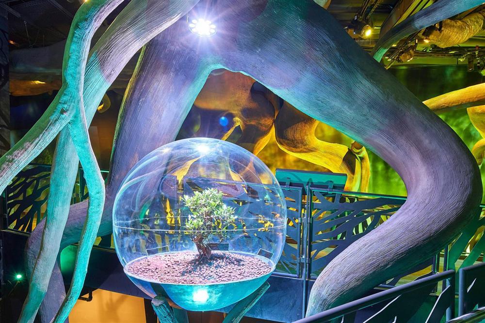 2020杜拜世博永續主題館1